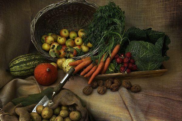 Objectif: favoriser l'achat de fruits et légumes chez les producteurs locaux.