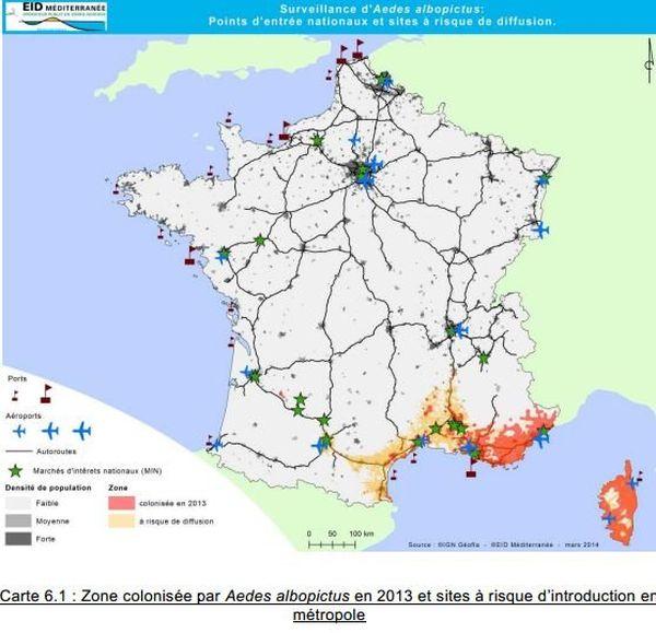 La carte de la prolifération du moustique tigre
