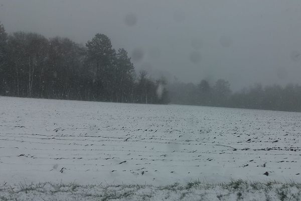 La neige est de retour à Mont-Saint-Jean, en Côte-d'Or, ce lundi 11 mars 2019.