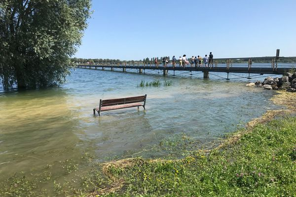 Près de la passerelle de Champaubert, le lac du Der déborde sur les berges.