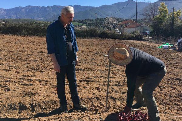 À Peri, des vignes cultivées à l'ancienne et bio vont pousser sur une parcelle de 3 000 mètres carrés.