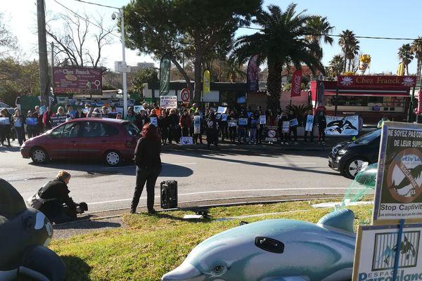 Les manifestants sont positionnés au rond point devant le parc animalier.