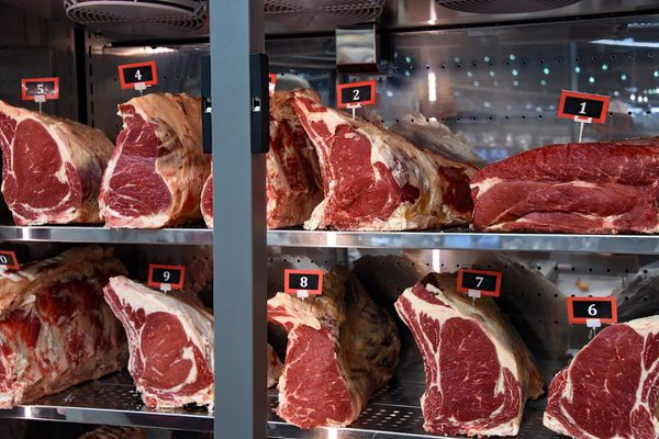 Viande rouge - Alimentation