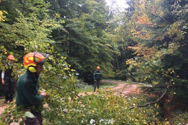 Les agents de l'ONF sont à pied d'oeuvre dans la forêt des Colettes dans l'Allier depuis l'épisode neigeux.