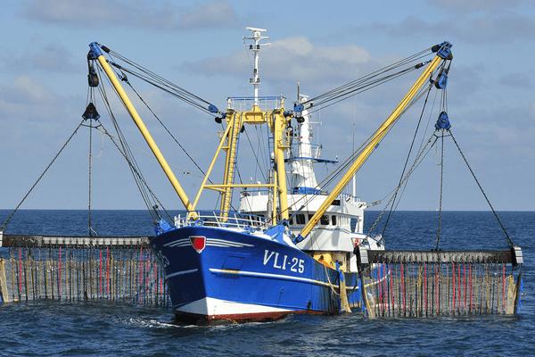 Bateau de pêche électrique