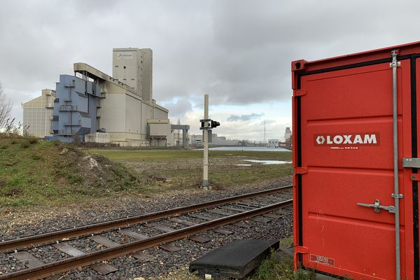 Odeur d'oeuf pourri, au moment où cette photo a été prise, vendredi 29 janvier, quartier Port du Rhin à Strasbourg