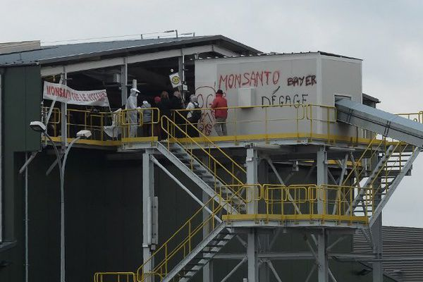 Des militants du collectif des Faucheurs volontaires et de la Confédération paysanne ont pénétré sur le site de Monsanto à Trèbes, dans l'Aude - 14 décembre 2016
