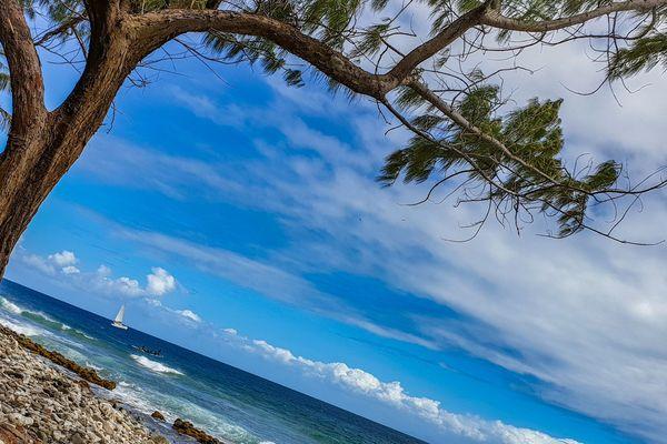 Les Caraïbes, région invitée par le festival international de géographie de Saint-Dié