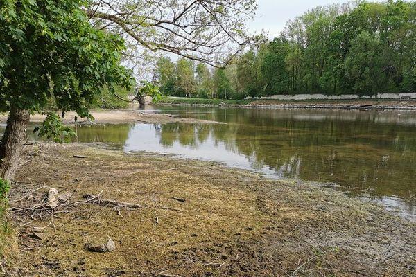 A Vincelles, la rivière Yonne le 21 avril