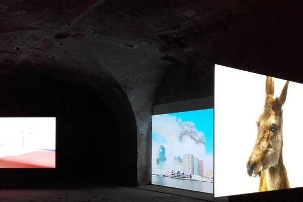 Zineb Sedira et son road movie algérien, Fiorenza Menini et la chute des tours à New-York,Mircea Cantor et la confrontation entre loup et biche