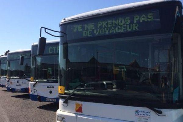 Les bus de la CTPM, le réseau de transport urbain de Perpignan, restent au dépôt.