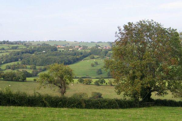 Un paysage du Brionnais dans le sud du département de Saône-et-Loire