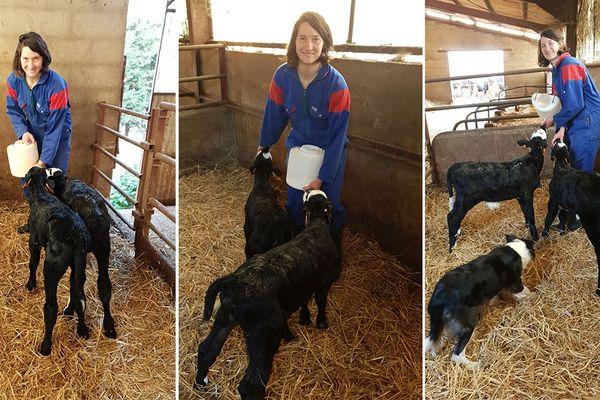 Jessy Trémoulière, joueuse de rugby à l'ASM Romagnat, vit un confinement heureux dans la ferme familiale en Haute-Loire.