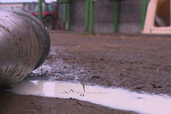 Dans l'Aisne, l'Oise, le Nord et la Somme, 312 producteurs de lait seront bientôt indemnisés suite aux restrictions sanitaires imposées après l'incendie de Lubrizol à Rouen.