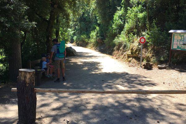 ILLUSTRATION / Entrée du site de la forêt de Bonifato, massif forestier du Nord-ouest de la Corse, se situe à environ 20 km de Calvi. Son accès est aujourd'hui interdit