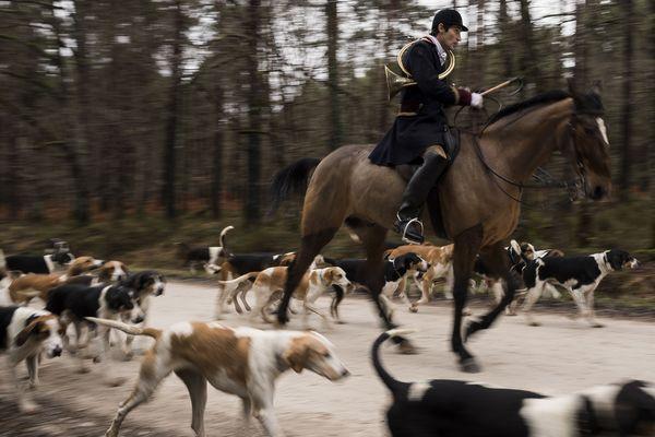 Une partie de chasse-à-courre à Chatenoy (Loiret)