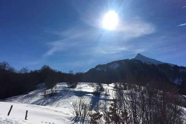 Découvrir le grand site du Puy Mary grâce à un sentier zigzaguant dans la forêt, entre le Lioran et Mandailles-Saint-Julien, c'est désormais possible. Un nouvel itinéraire balisé et sécurisé a ouvert dans les Monts du Cantal.