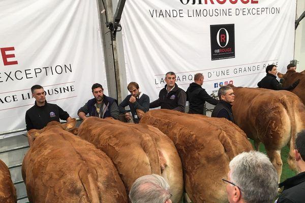 Un événement organisé par Francis Plainemaison, entreprise historique à Limoges appartenant au secteur de l'agroalimentaire et filiale de Beauvallet depuis 1995.