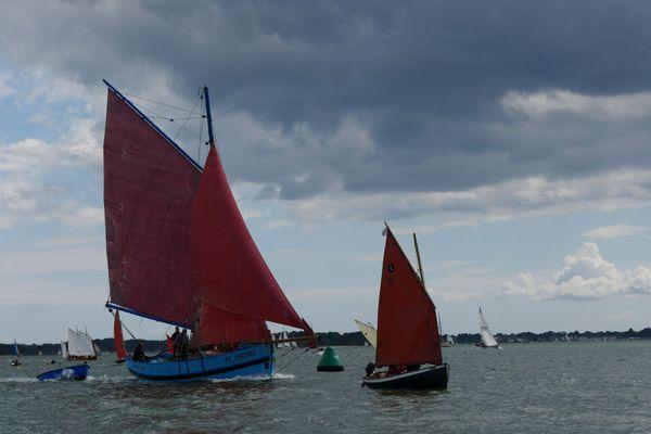 La Semaine du Golfe du Morbihan offre le spectacle de voiliers traditionnels réunis. Ici en 2019