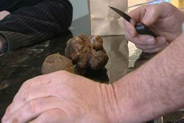 Pour apprécier la truffe noire : évitez la cuisson et dégustez-la nature