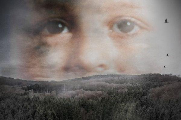 La malédiction de la Vologne est diffusée mercredi et jeudi 5 décembre sur France 3