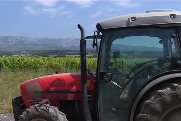 Avec la présence du Mildiou, le traitement des vignes s'intensifie