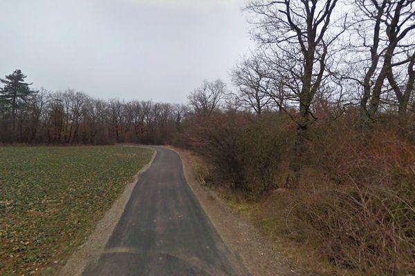 Un sentier cheminant vers la forêt de Nonnenbruch, depuis Richwiller.