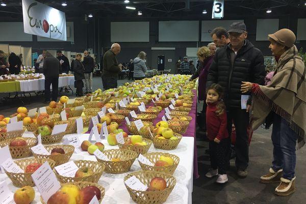 Plus de 2 000 variétés de pommes venues de 9 pays différents étaient présentes au salon Europom à Troyes