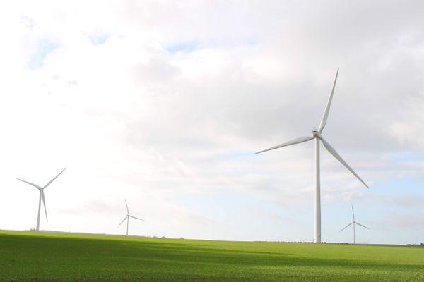 Illustration d'un champ d'éoliennes à Avesnes-le-Compte, dans le Pas-de-Calais.