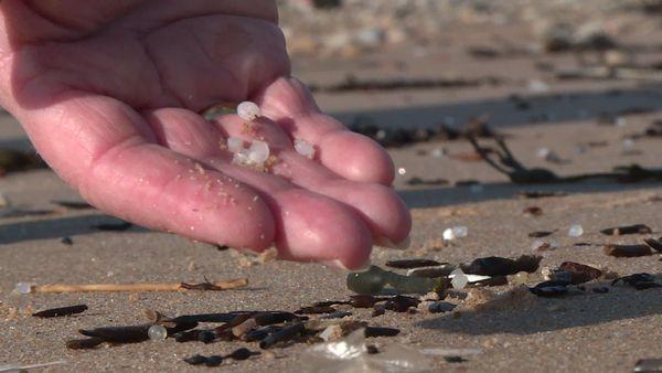 D'où viennent ces petites billes de plastique ? L'association Decos va tenter de trouver une réponse.
