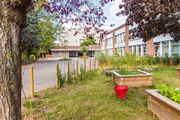 Cour d'école Bouchor végétalisée à Lille.