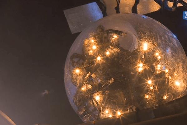Ces décorations ont été installées dans la nuit du mardi 7 novembre, rue Vital Carles.