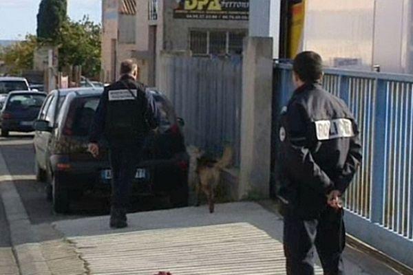 Les démineurs de la Sécurité Civile ont fouillé les alentours du bâtiment à l'aide d'un chien.