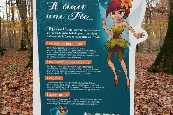 Une balade en forêt avec une application gratuite pour sauver la Fée Merveille.