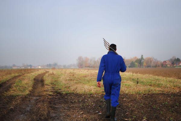 Des observatoires départementaux contre les actes de malveillance envers les agriculteurs vont voir le jour - Photo d'illustration