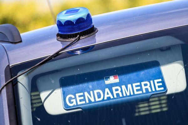 Photo d'illustration. Une enquête de gendarmerie a été ouverte, après la découverte d'une jument tuée et mutilée dans les Deux-Sèvres.
