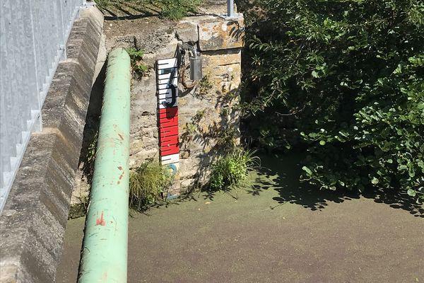 le marais Breton manque d'eau en dépit d'un été pluvieux