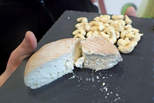 Un fromage végétal vegan à base de lait de noix de cajous.