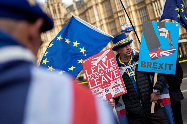 """Un manifestant anti """"Brexit"""""""