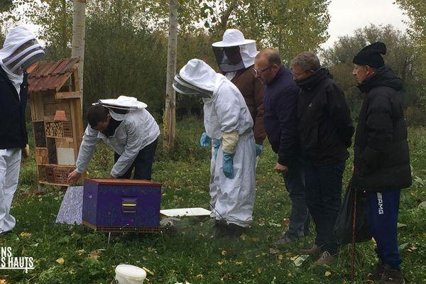 Julien Ferté montre ses ruches
