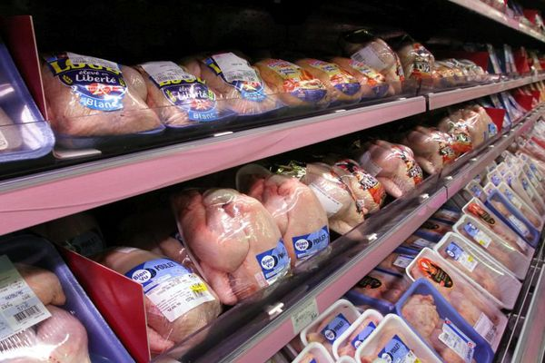 Un rayon volailles dans un supermarché