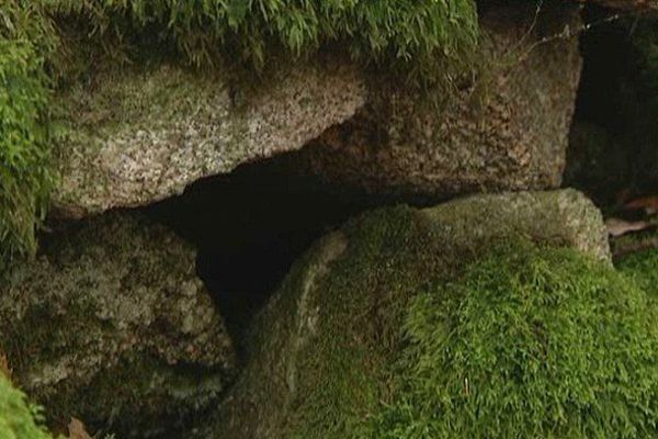 L'entrée d'une des galeries de la mine gallo-romaine découverte récemment à Aureil.