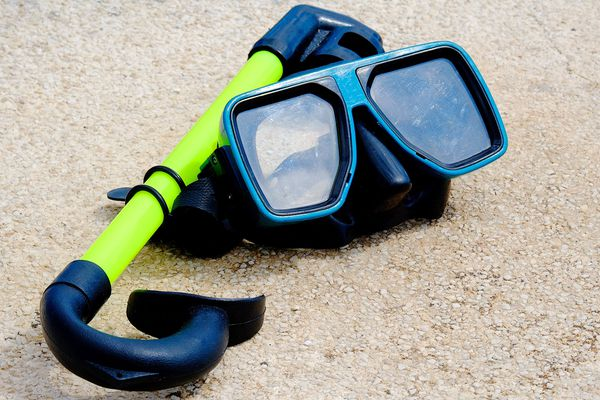 Le masque de plongée remporte la palme de l'objet oublié dans un VTC à Strasbourg.