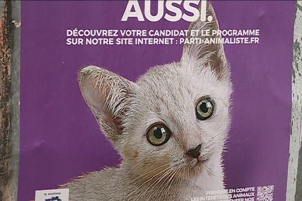 L'une des affiches du parti animaliste