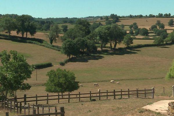 C'est en Saône-et-Loire, dans le Charolais-Brionnais, que se situe le berceau de la race bovine charolaise