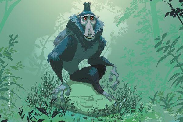 Une quarantaine d'auteurs de BD locaux, nationaux et internationaux ont accepté de dessiner et donner une oeuvre en lien avec le macaque à crête pour le festival