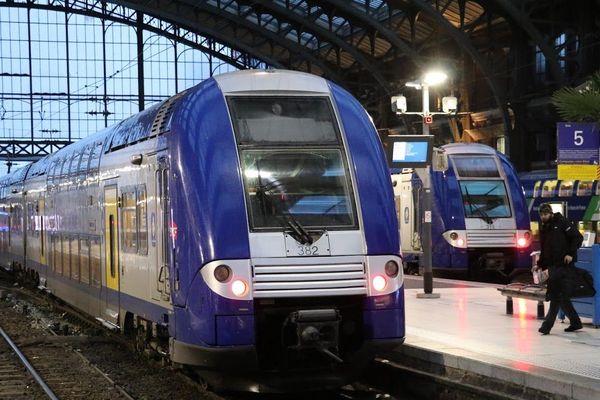 Des TER en gare de Lille-Flandres.