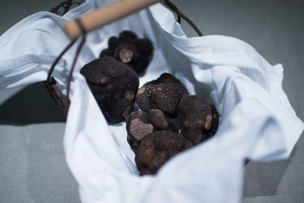 La truffe se trouve également en Isère.