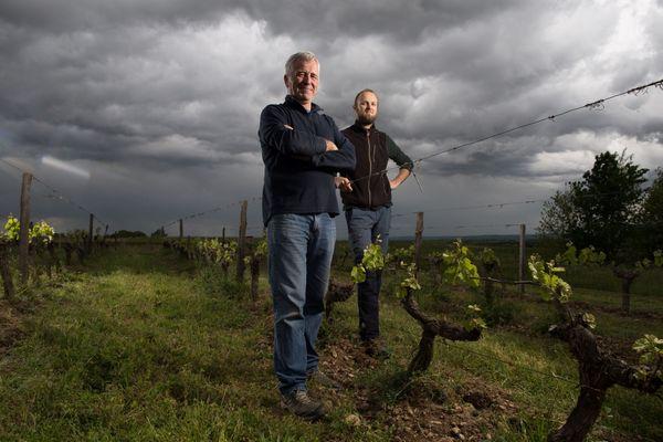 Marc et Thibaut Penavayre, vignerons du Domaine Plaisance Penavayre à Fronton