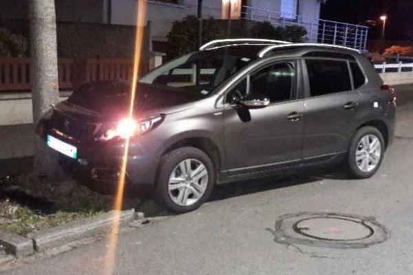 C'est après avoir percuté cet arbre à Acigné près de Rennes, que le conducteur a été contrôlé avec un taux record d'alcoolémie